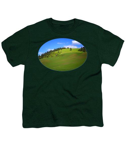 Palouse - Landscape - Transparent Youth T-Shirt
