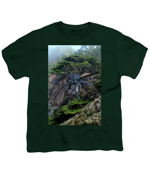 Point Lobos Veteran Cypress Tree Youth T-Shirt