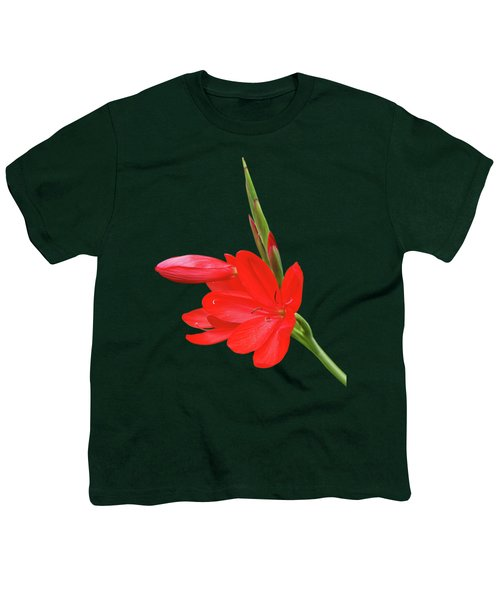 Ritzy Red Youth T-Shirt