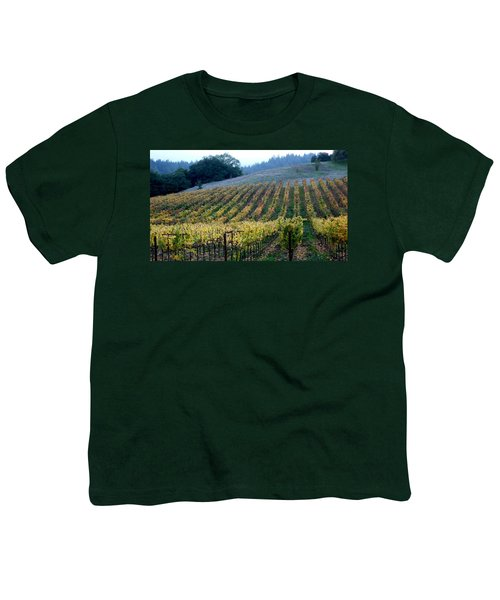 Sonoma County Vineyards Near Healdsburg Youth T-Shirt