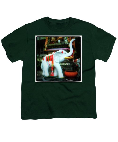 Youth T-Shirt featuring the photograph White Elephant. Meaning A Big Expensive by Mr Photojimsf