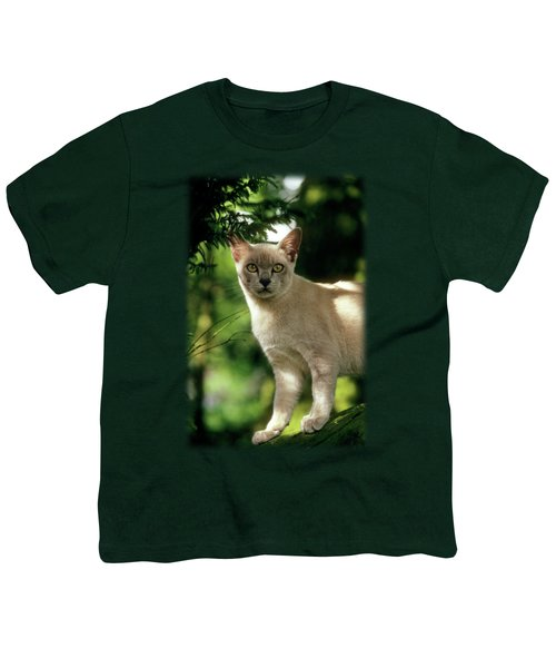 Wilham Youth T-Shirt by Jon Delorme