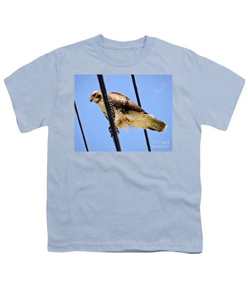Redtailed Hawk Youth T-Shirt