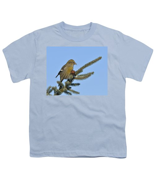 Spruce Cone Feeder Youth T-Shirt by Tony Beck
