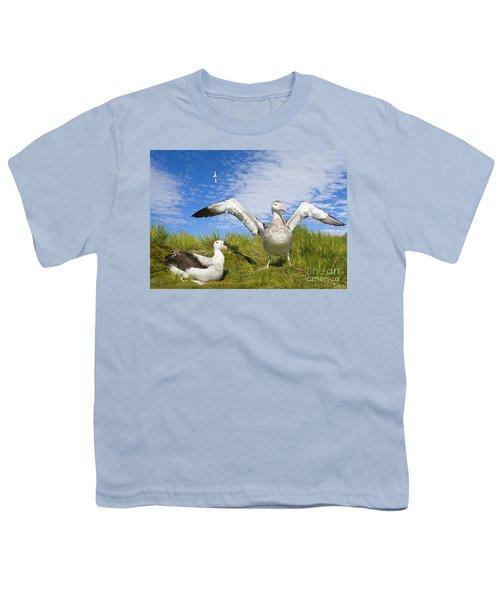 Wandering Albatross Courting  Youth T-Shirt by Yva Momatiuk John Eastcott