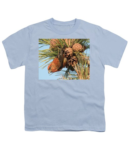Crossbill Youth T-Shirt by Judd Nathan