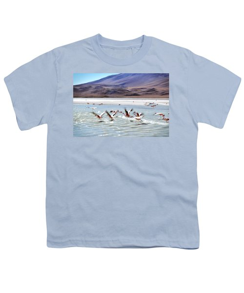 Flying Flamingos Youth T-Shirt by Sandy Taylor