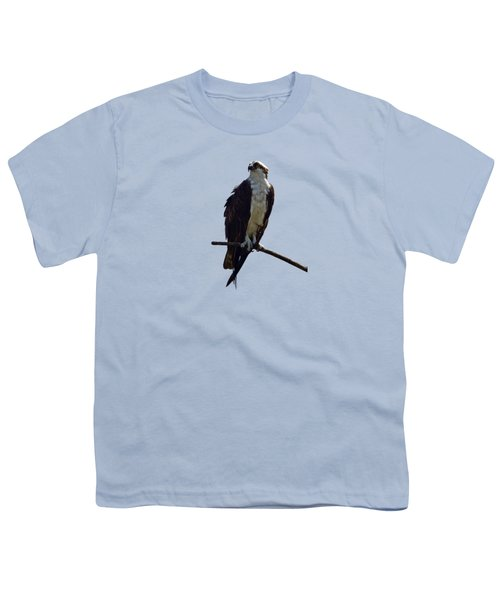 Osprey Youth T-Shirt by Deborah Good
