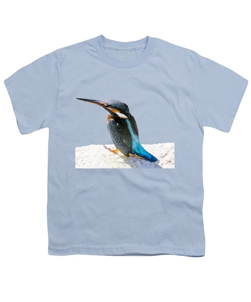 A Beautiful Kingfisher Bird Vector Youth T-Shirt