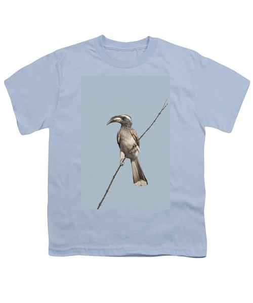 African Grey Hornbill Tockus Nasutus Youth T-Shirt