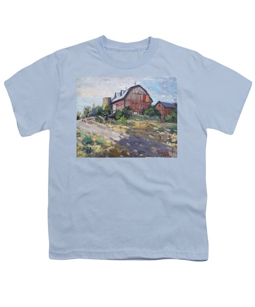 Barns In Georgetown Youth T-Shirt