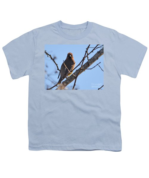 Cedar Wax Wing On The Lookout Youth T-Shirt by Barbara Dalton