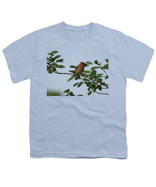 Cedar Waxwing Profile Youth T-Shirt