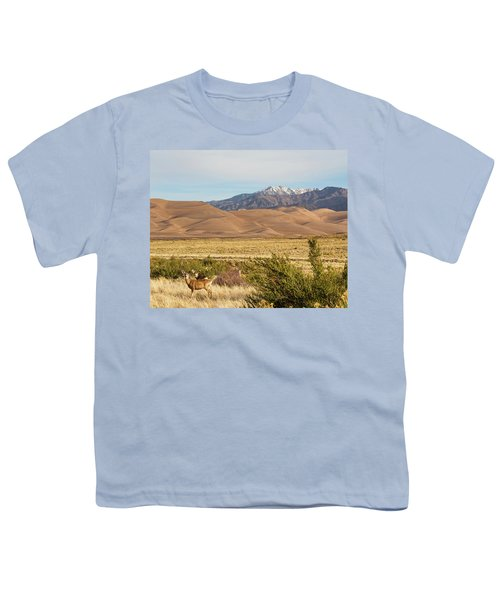 Youth T-Shirt featuring the photograph Deer And The Colorado Sand Dunes by James BO Insogna