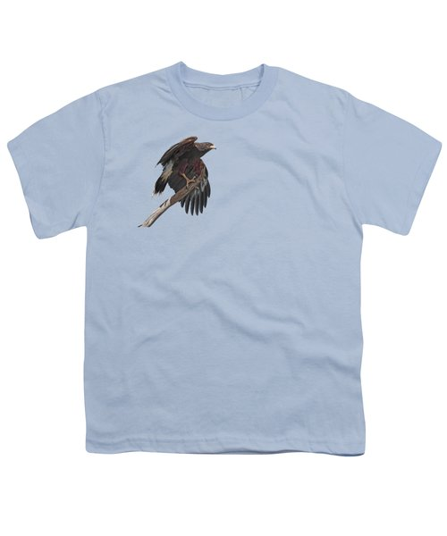 Harris Hawk - Transparent 2 Youth T-Shirt by Nikolyn McDonald