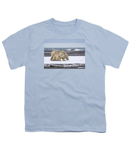 Looking Back In The Arctic Youth T-Shirt
