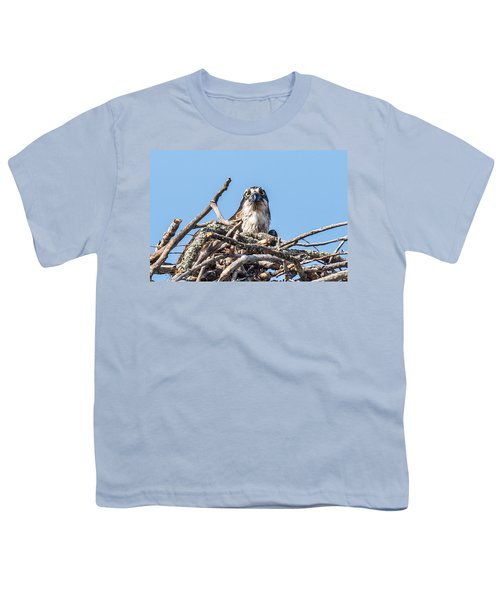 Osprey Eyes Youth T-Shirt by Paul Freidlund