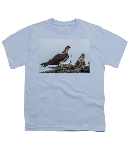 Osprey On A Nest Youth T-Shirt by Paul Freidlund