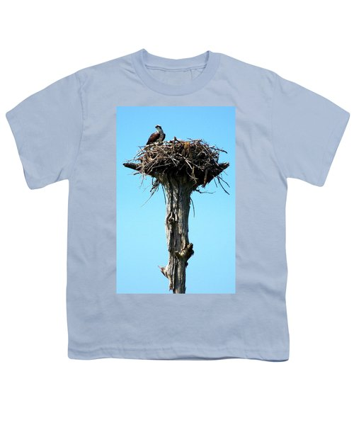 Osprey Point Youth T-Shirt by Karen Wiles