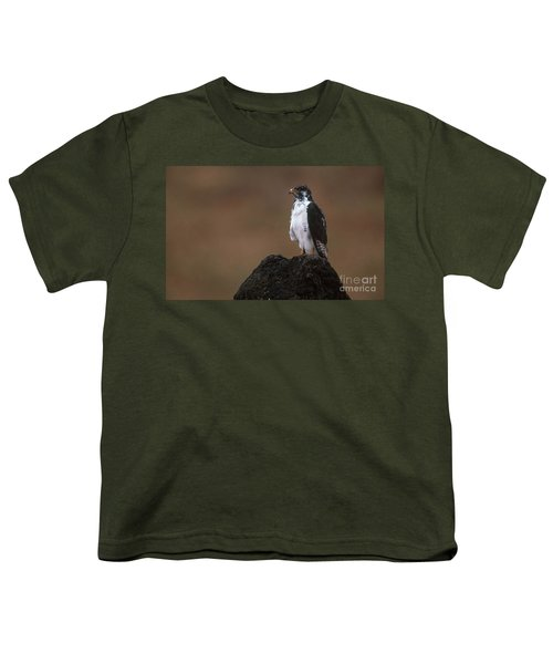 Augur Buzzard Youth T-Shirt by Art Wolfe