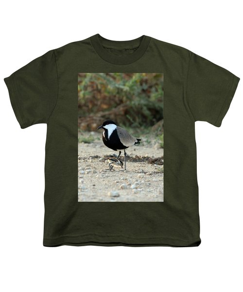 Spur-winged Plover And Chick Youth T-Shirt