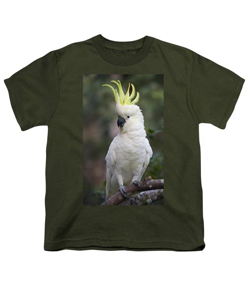 Sulphur-crested Cockatoo Displaying Youth T-Shirt