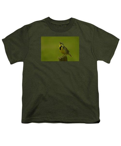 The Meadowlark Sings Youth T-Shirt by Jeff Swan
