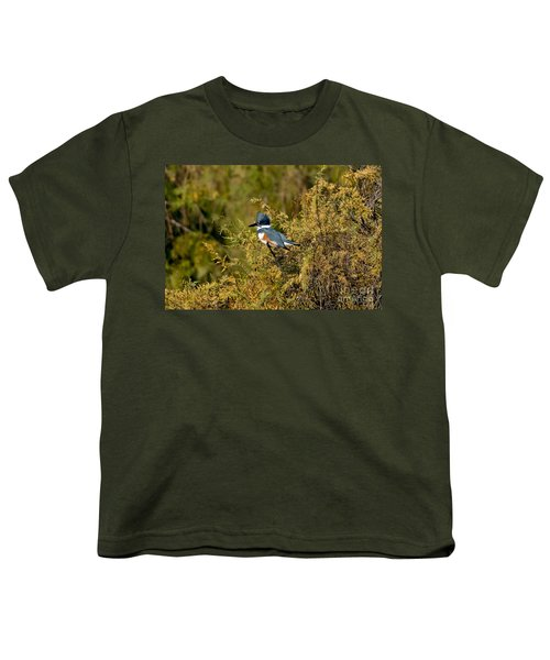 Belted Kingfisher Female Youth T-Shirt by Anthony Mercieca