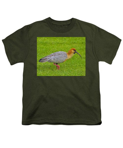 Black-faced Ibis Youth T-Shirt