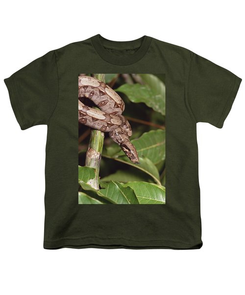 Boa Constrictor Coiled South America Youth T-Shirt by Gerry Ellis