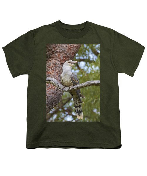 Channel-billed Cuckoo Fledgling Youth T-Shirt by Martin Willis