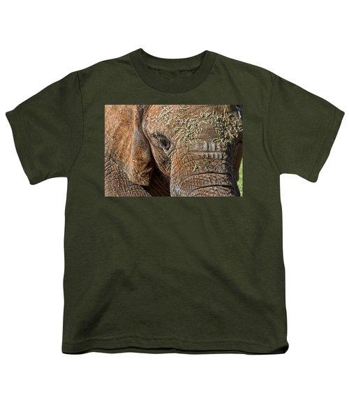 Elephant Never Forgets Youth T-Shirt by Miroslava Jurcik