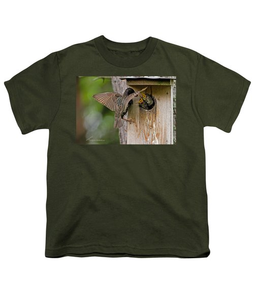 Feeding Starlings Youth T-Shirt