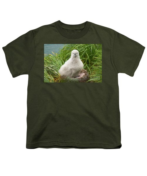 Grey-headed Albatross Chick Youth T-Shirt by Yva Momatiuk John Eastcott
