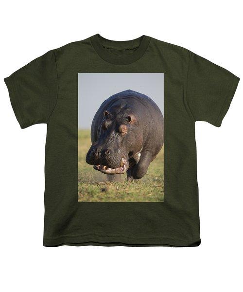 Hippopotamus Bull Charging Botswana Youth T-Shirt by Vincent Grafhorst