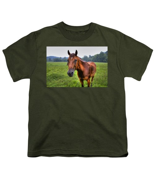 Youth T-Shirt featuring the photograph Horse In A Field by Jonny D