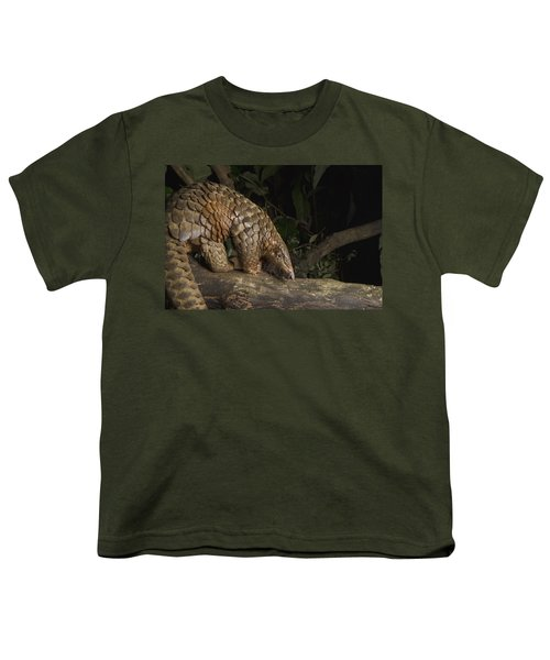 Malayan Pangolin Eating Ants Vietnam Youth T-Shirt