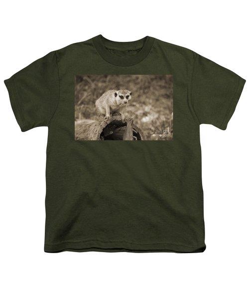 Meerkat On A Log Youth T-Shirt by Douglas Barnard