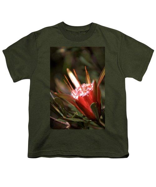 Youth T-Shirt featuring the photograph Mountain Devil by Miroslava Jurcik