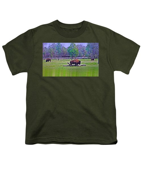 One Bison Family Youth T-Shirt