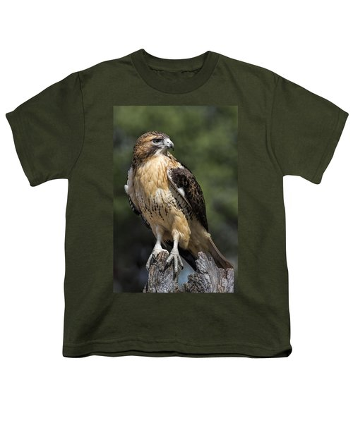 Red Tailed Hawk Youth T-Shirt