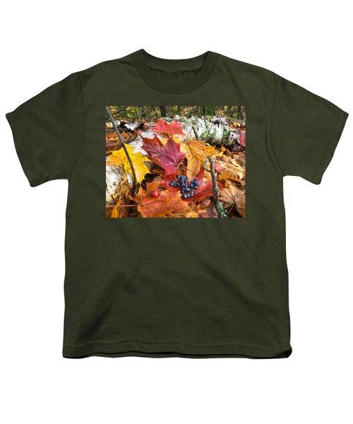 Season Finale  Youth T-Shirt by Bill Pevlor