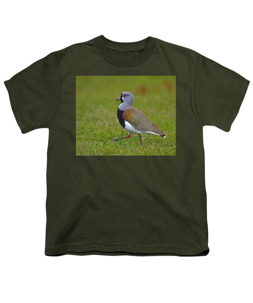 Strutting Lapwing Youth T-Shirt by Tony Beck