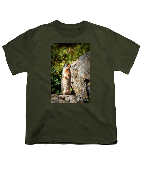 The Marmot Youth T-Shirt by Robert Bales