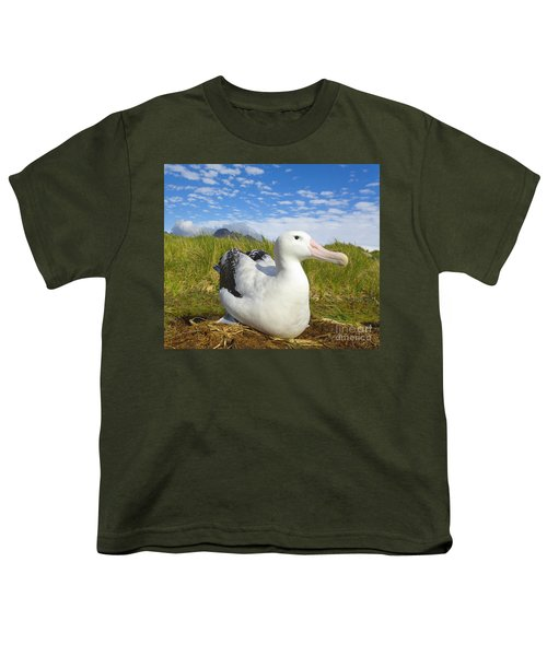 Wandering Albatross Incubating  Youth T-Shirt