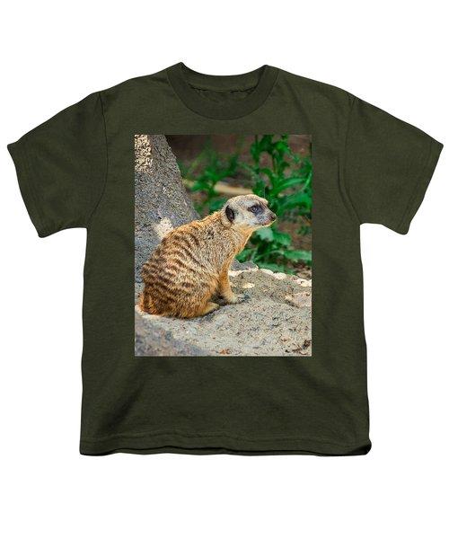 Watchful Meerkat Vertical Youth T-Shirt by Jon Woodhams