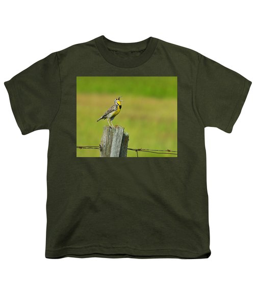 Western Meadowlark Youth T-Shirt by Tony Beck