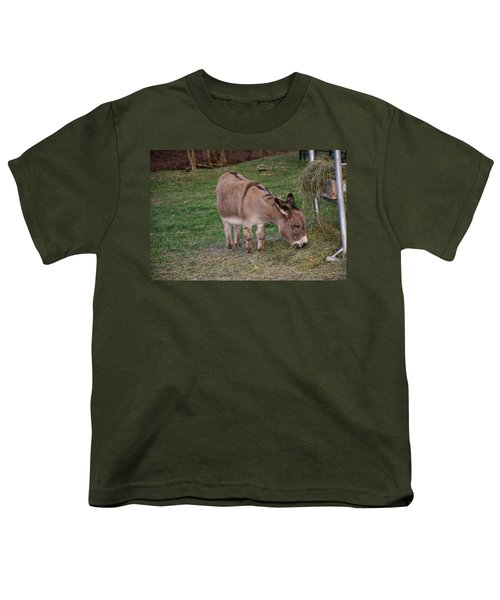 Young Donkey Eating Youth T-Shirt