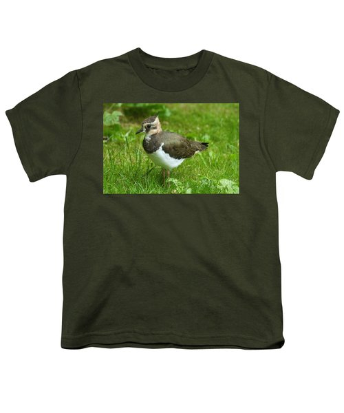 Young Lapwing Youth T-Shirt