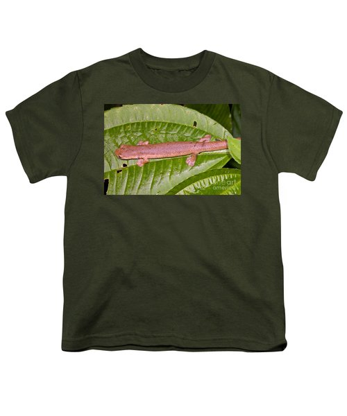 Bolitoglossine Salamander Youth T-Shirt by Dante Fenolio